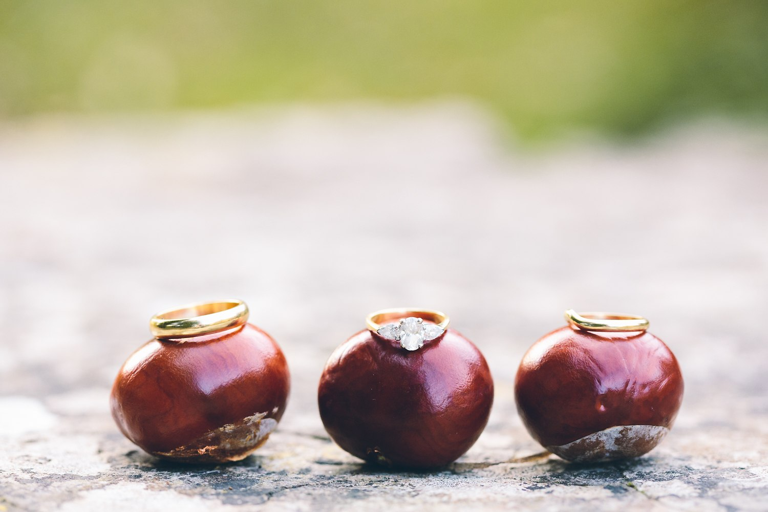 fun wedding photo of wedding rings on conkers
