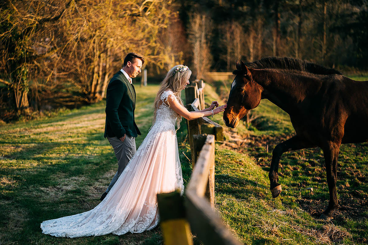 couple photos with horses